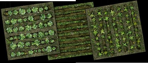 Cropland Ground Tiles